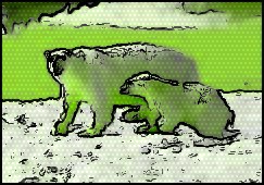Découvrez l'Antartique grâce aux croisières polaires